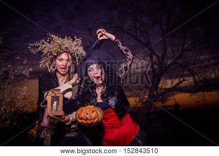 Beauty Halloween witches holding a pumpkin in sunset