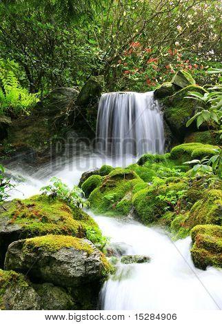 Kleine natürliche Quelle Wasserfall von Moss und üppigem Grün umgeben.