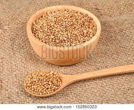 coriander seed in wooden bowl and spoon on hemp sack background