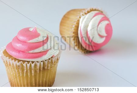 horizontal from above shot of two cupcakes with pink and white swirl icing sitting on a white plate with pink and red rim isolated on white background with room for text.