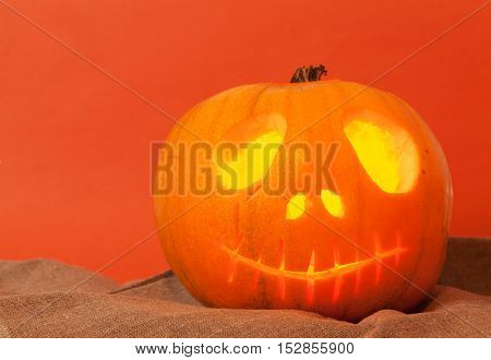 Beautiful Pumpkin on Halloween on an orange background