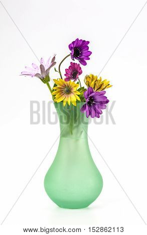 Multi coloured flowers in a green vase