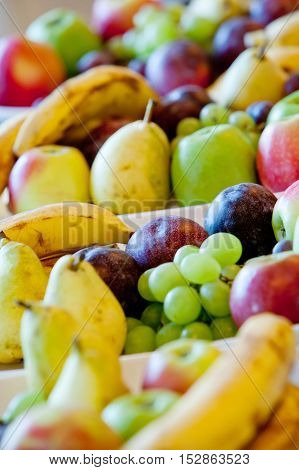 pears bananas plums apples grapes lying on white plates