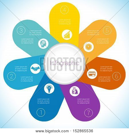 Flower Camomile infographic template colourful petals seven positions.
