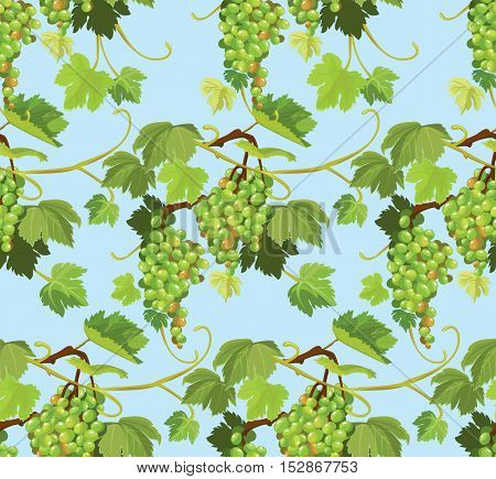 Seamless pattern with green grapes and leaves on blue background. Element for restaurant bar cafe menu or label.