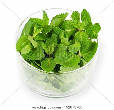 Fresh peppermint leaves in glass bowl on white background. Green Mentha piperita is an edible herb and its mint flavor is used for ice cream, cocktails and toothpaste. Isolated macro food photo.