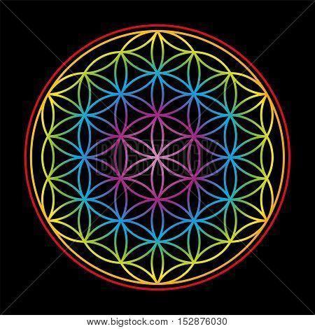 Flower of Life, symbol of harmony - rainbow gradient colored illustration on black background.