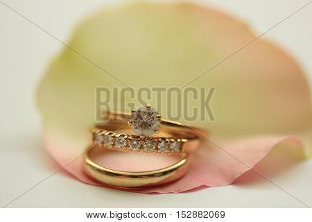 Three wedding rings on a rose petal