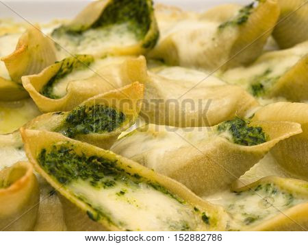 baked conchiglioni stuffed with spinach and cheese