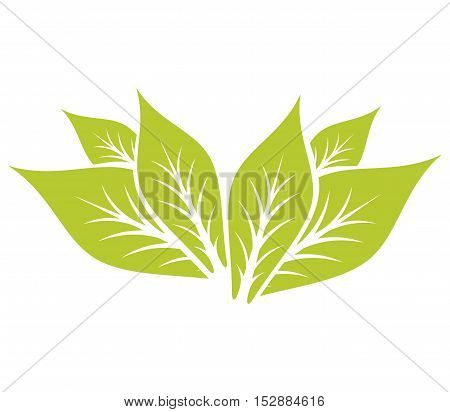 Leaf Pair Icon Vector Illustrations on white Background.