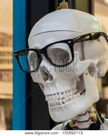Model of human skull in black glasses frame