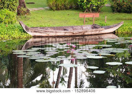 Paddling boat and lotus in the well