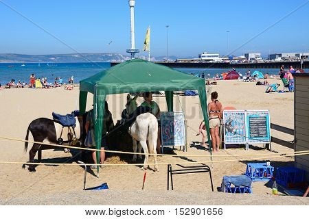 WEYMOUTH, UNITED KINGDOM - JULY 18, 2016 - Donkeys under a tent cover on the beach with the pier and Jurassic Skyline Tower to the rear Weymouth Dorset England UK Western Europe, July 18, 2016.