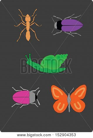 Set of insects, vector illustration of bugs, butterfly, ant and snail