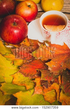 The composition of the dry autumn maple leaves with a cup of tea and a lemon on the table. Autumn ripe apples