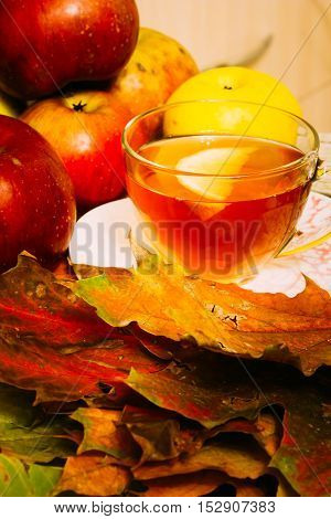 Tea with lemon in a glass cup among autumn maple leaves and ripe red apples. Composition
