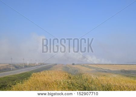 Landscape Burning Field. The Burning Of Rice Straw In The Fields. Rice Paddies