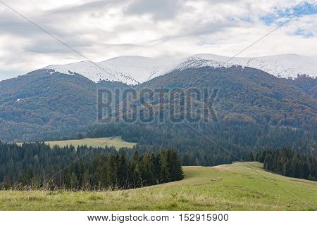 Mountains range with green meadow and storm clouds in the evening