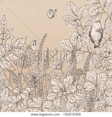 Hand drawn floral elements. Vintage beige card with flowers plants butterflies and sitting bird on branch. Monochrome vector sketch.
