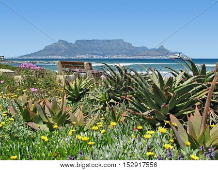 Blouberg Strand, Cape Town South Africa 12vvb