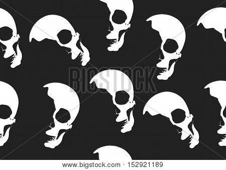 Halloween Skull Vector Wallpaper