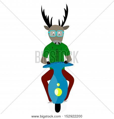 Deer hipster cartoon. Hipster in glasses on moped hip trendy vintage hipster fashion. Vector illustration