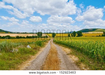 Image of Country Road between Fields in Bulgaria