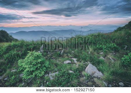 Carpathians mountain in summer time, toned like Instagram filter.