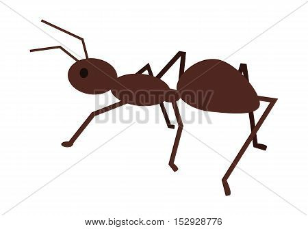 Ant vector illustration in flat style. Social insect illustration for hard working, teamwork, collectivism concepts.  Pest control. Isolated on white background