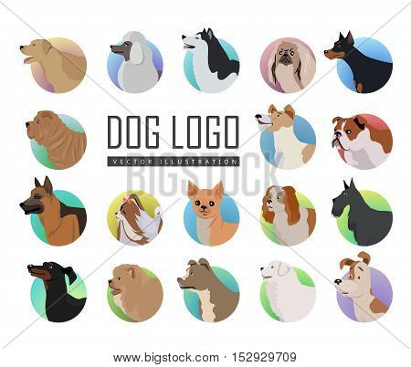 Set of dog vector logos in flat design. Pekingese, poodle, huskies, doberman, terrier, bulldog, shepherd, chihuahua, maltese, spaniel dachshund pit bull sharp chow-chow schnauzer illustrations