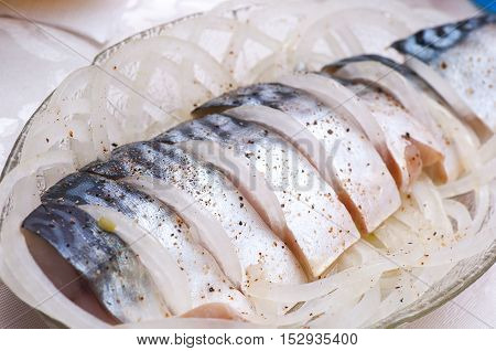 Pickled Mackerel (scomber) With Onion