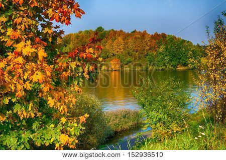 Warm autumn landscape of the lake in the sunlight with the beautiful multi-colored leaves