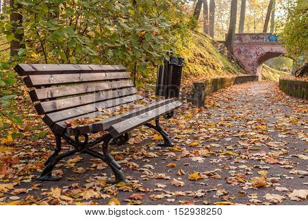 Autumn bench and path to the bridge full of yellow leafs