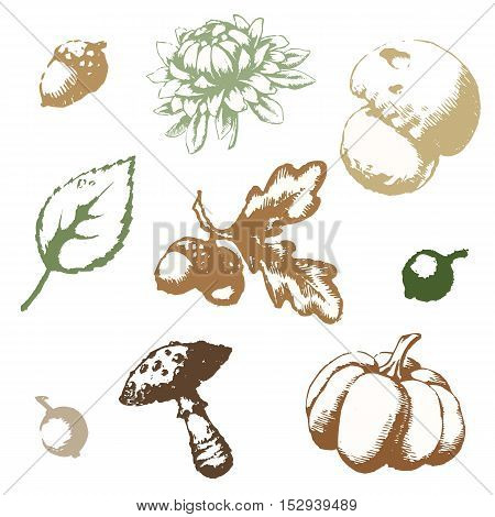 Set of vector images on the theme of autumn