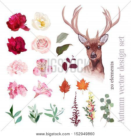 Autumn floral mix reindeer head vector design set. Burgundy red pink white flowers. Peony rose alstroemeria lily hydrangea leaves and berries. All elements are isolated and editable.