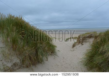 View from the beach between the dunes