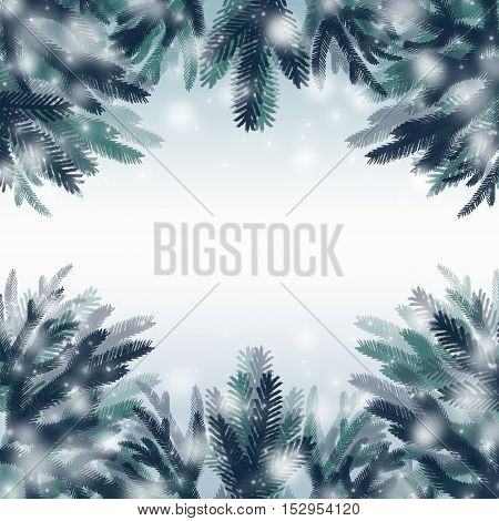 Christmas frame made of fir branches and snow