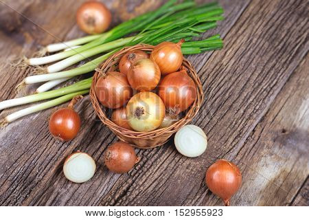 Fresh organic onion and spring onion on rustic table in wicker basket