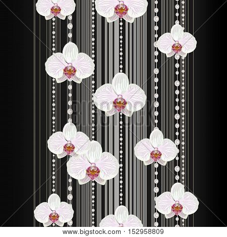 Beautiful white orchid flowers on dark background with stripes and pearls.