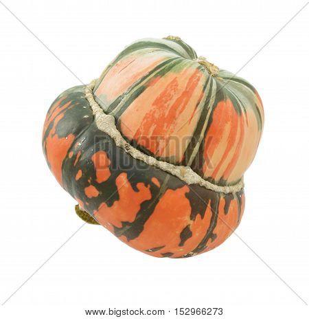 Orange And Green Striped Turban Squash