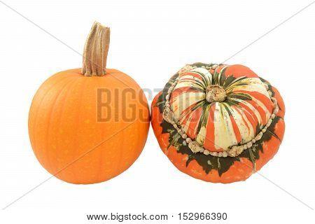 Small Pumpkin And Turks Turban Squash