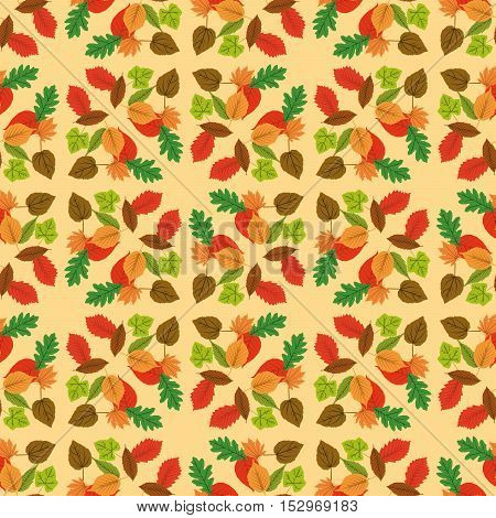 Autumn leaf design over white yellow background vector illustration