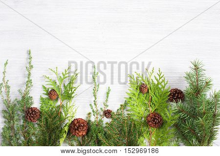 White wooden background with evergreen branches and cones
