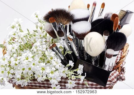 Makeup brushes set in crib with flowers. Chickweed. White background.
