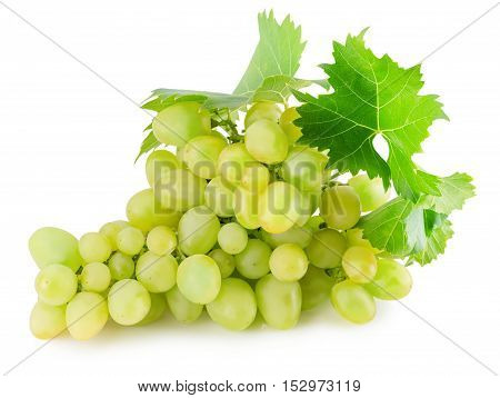 green grapes isolated on the white background.