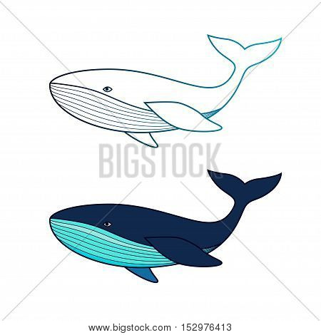 Whale icon. Vector illustration isolated on white.