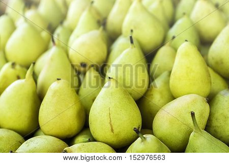 A lot of yellow and green pears on the market