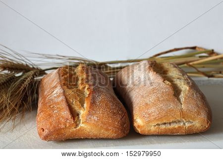 Loaves of fresh bread with ears of corn on the table
