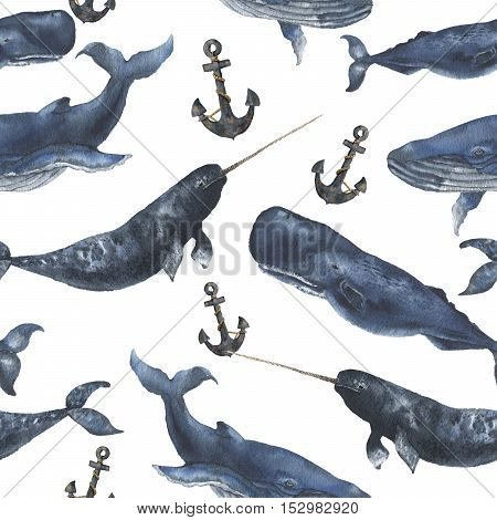 Watercolor seamless pattern with whales and anchor. Illustration with blue whales, cachalot and narwhal isolated on white background. For design, prints or background.