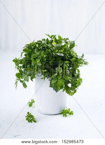 Fresh fragrant parsley in a small ceramic jug